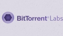 bittorrent-new-labs2