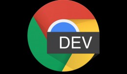 Chrome-Dev-Icon